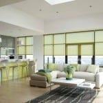 Green roller blinds in modern living room